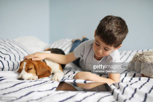 A boy looking at his tablet, and stroking his dog