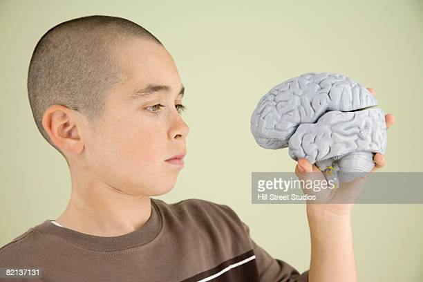 Boy looking at human brain model