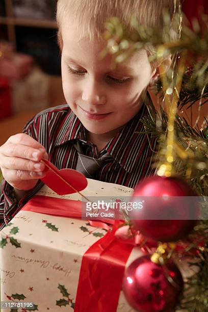boy looking at present under christmas tree