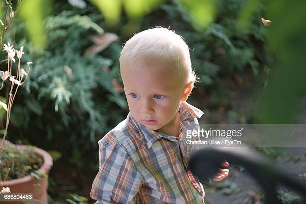 boy looking away while standing at backyard - christian hilse stock-fotos und bilder