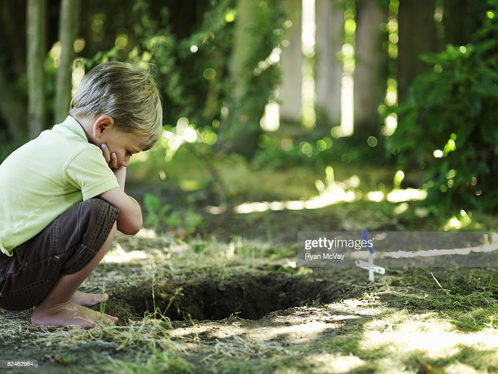 Boy looking into grave of pet. : Stock Photo