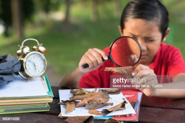 Boy Looking Through Magnifying Glass On Table In Park