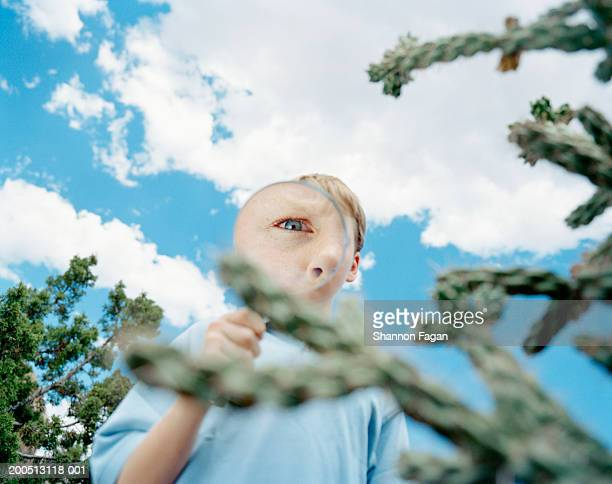 Boy (11-13) looking through magnifying glass outdoors, portrait
