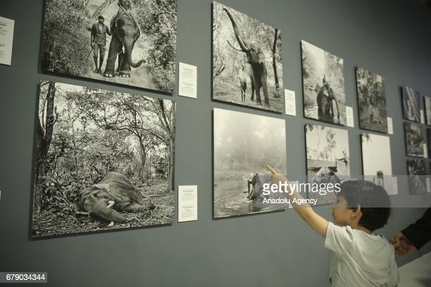 "Boy looks at the photos of Indian Photo Journalist Senthil Kumaran Rajendran who works for Trikaya Photos winner of the ""Third Prize"" in the ""Story..."