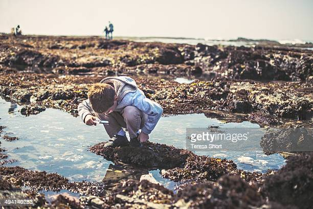 Boy Looks At Tide Pools, Half Moon Bay, California