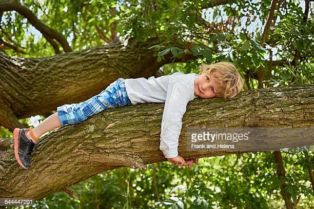 Boy lying on forest tree branch