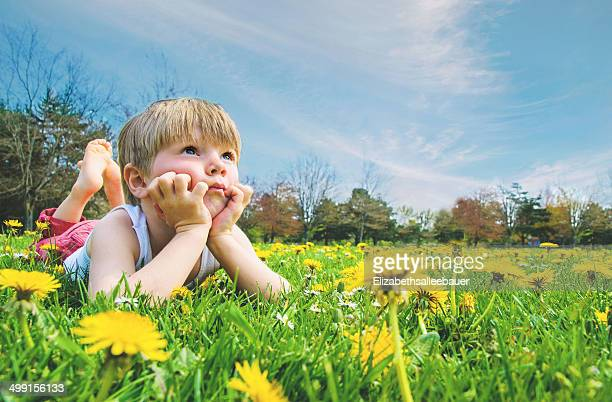Boy  (4-5) lying on grass covered with dandelions and daisies