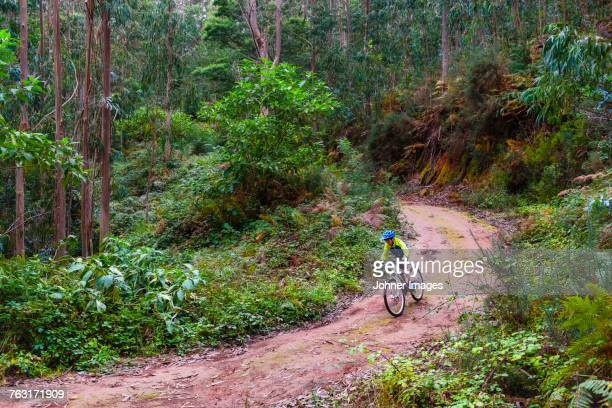 boy mountain biking through forest - lareira stock pictures, royalty-free photos & images