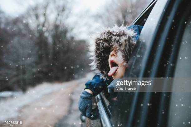boy on a road trip. the little boy is looking from the car window in winter , opened his mouth and pulled out his tongue, catches snowflakes - holiday stock pictures, royalty-free photos & images