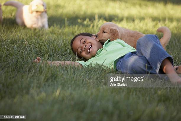 boy (5-7) on grass with dog, smiling - puppies stock pictures, royalty-free photos & images