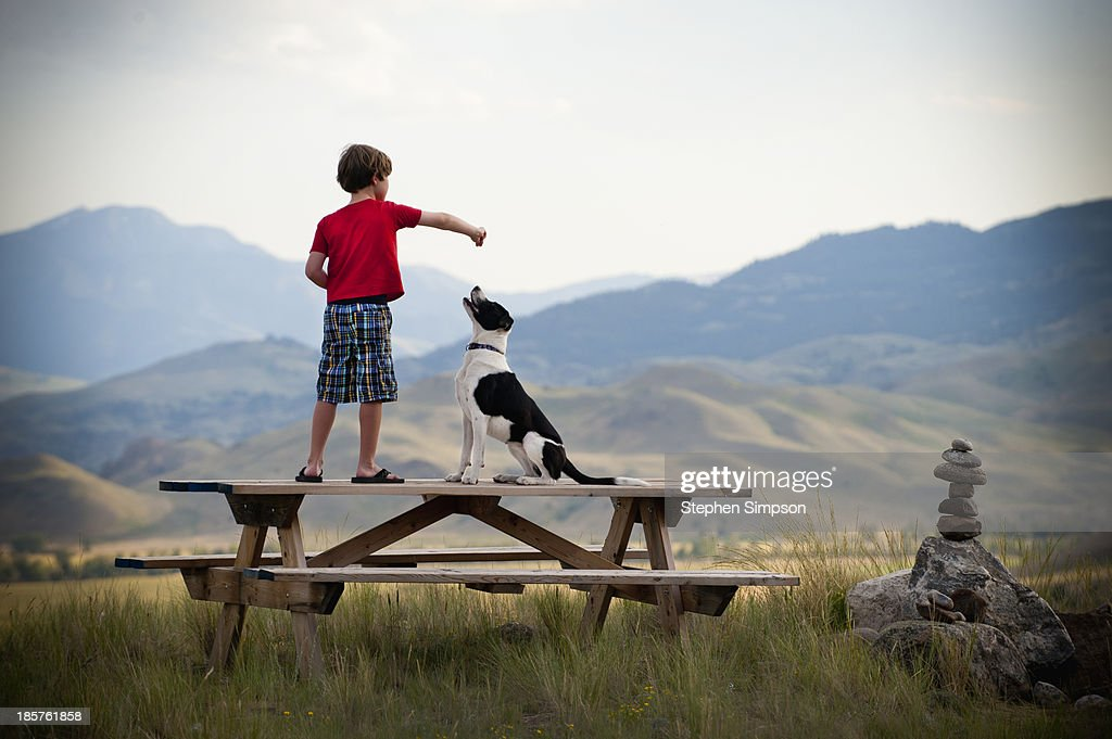 boy on picnic table training his dog : Stock Photo