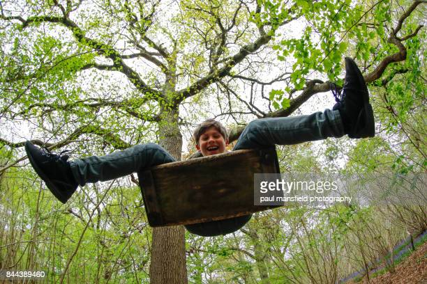 Boy on rope swing in woodland