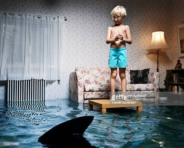 boy on table in flooded room, with shark