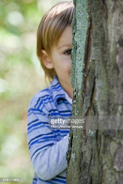 Boy peeking from behind tree