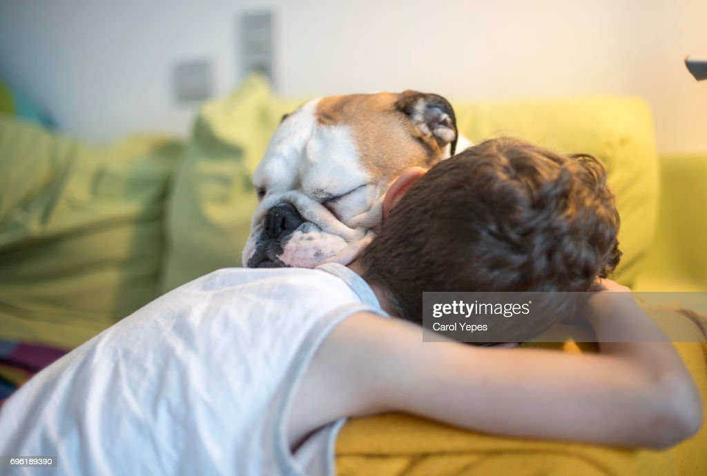 boy petting dog at home at home : Stock Photo