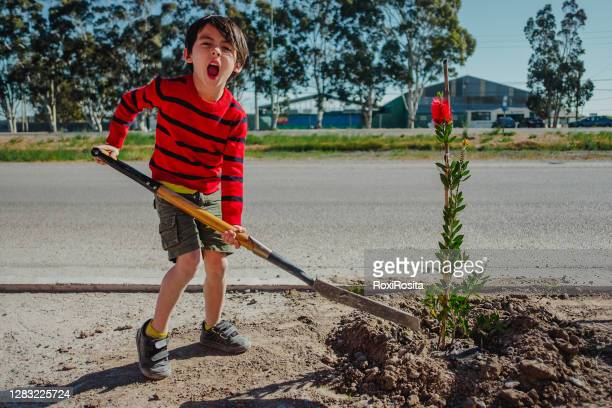 boy planting a plant - south america stock pictures, royalty-free photos & images