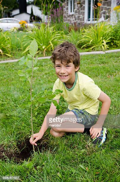 Boy planting a tree on front yard