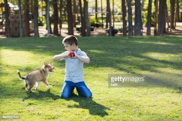 Garçon jouant à chercher avec petit chien sheltie dans le parc