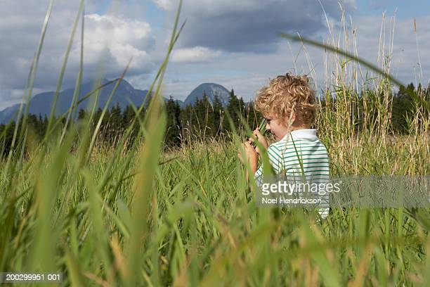 Boy (5-7 years) playing in long grass in rural landscape