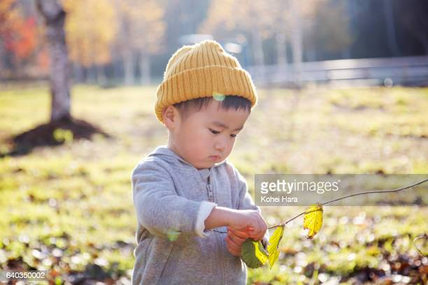 Boy playing in the meadow
