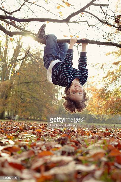 Boy playing on tree outdoors