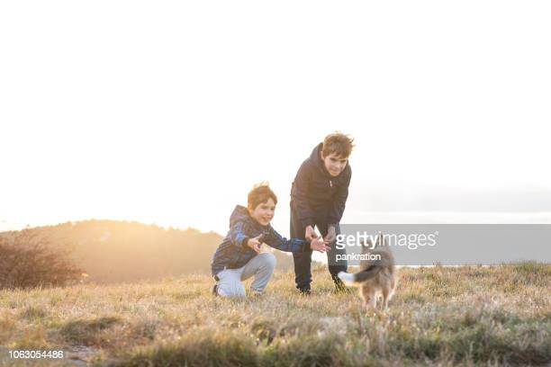 Boy Playing With a Puppy