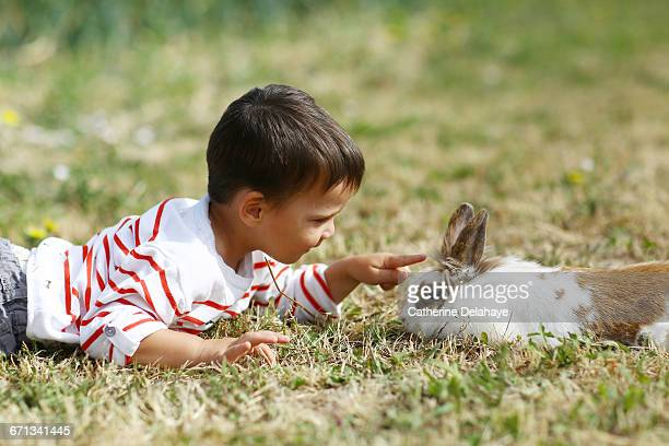A boy playing with a rabbit in the garden