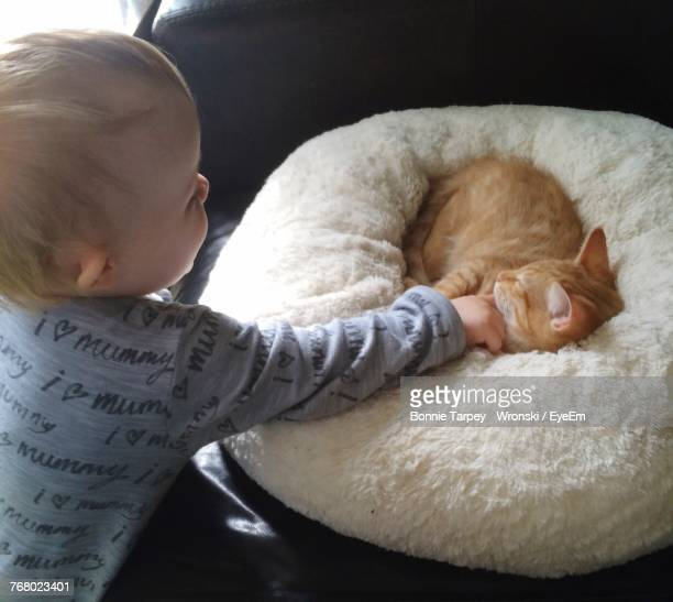 Boy Playing With Cat At Home