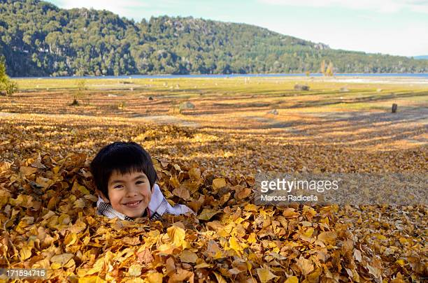 boy playing with fallen autumn leaves - radicella stock pictures, royalty-free photos & images