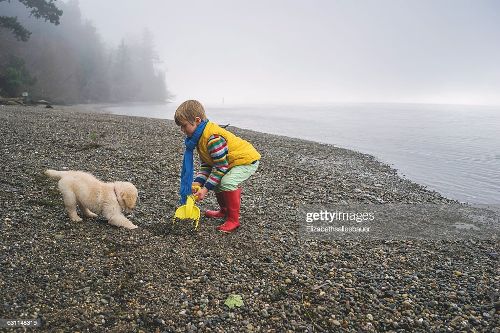 Boy Playing With Golden Retriever Puppy Dog On Beach High Res Stock Photo Getty Images