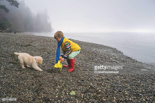 Boy playing with golden retriever puppy dog on beach