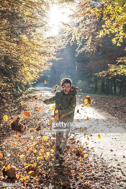 Boy playing with leaves in autumnal forest