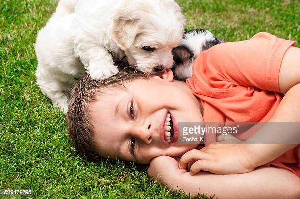 Boy playing with puppies