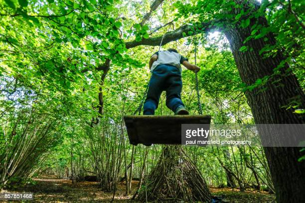 Boy playing with rope swing in forest