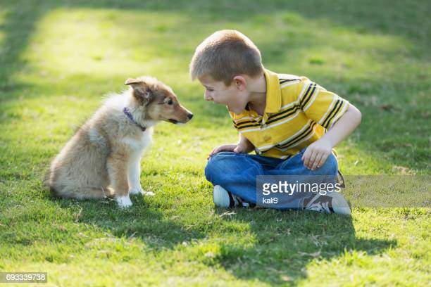 Boy playing with sheltie puppy in park