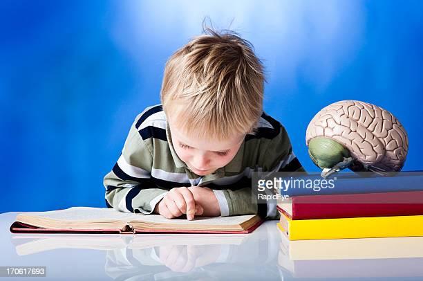 Boy poring over a book