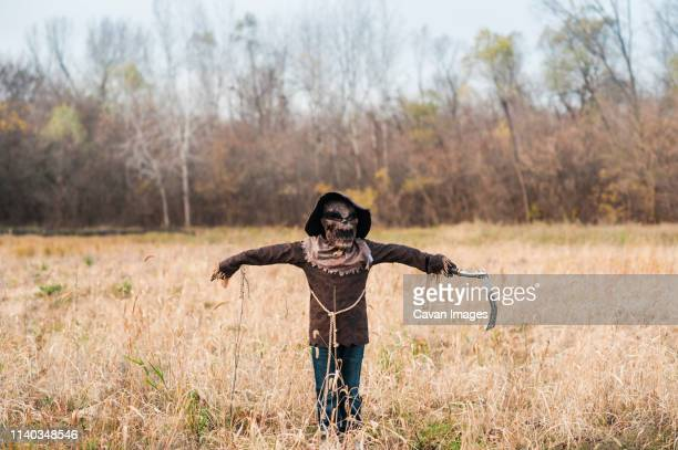 boy poses in scarecrow halloween costume in field - scarecrow agricultural equipment stock photos and pictures