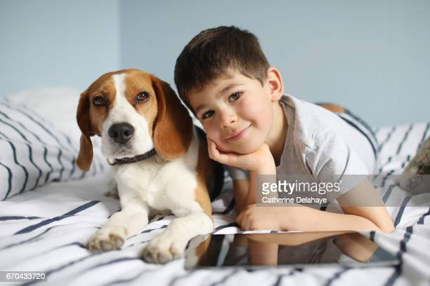 a boy posing with his dog on his bed - tablette numérique stock pictures, royalty-free photos & images