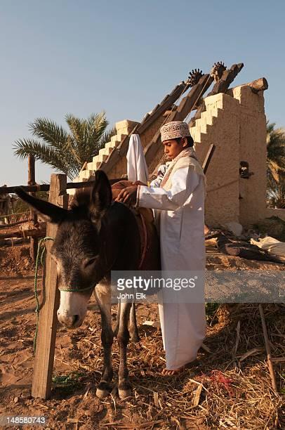 Boy preparing donkey for ride.