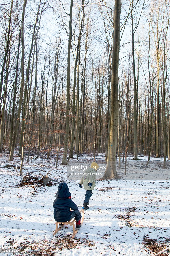 Boy pulling brother on sledge : Foto stock