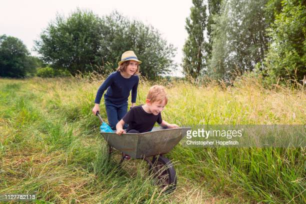 a boy pushing his younger brother in a wheelbarrow through a meadow - nur kinder stock-fotos und bilder