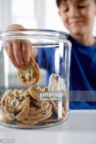 Boy (6-8) reaching into cookie jar