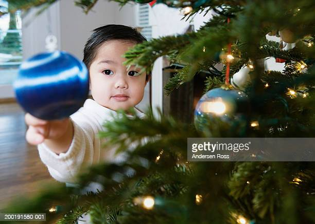Boy (2-4) reaching out for Christmas ornament
