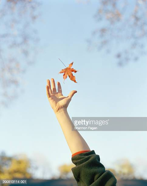 Boy reaching to catch falling leaf, close-up