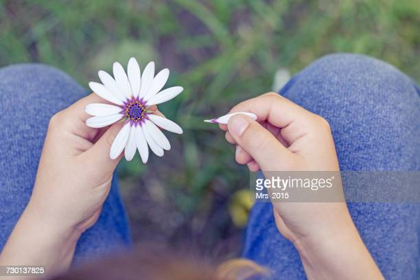 Boy removing petals from a flower