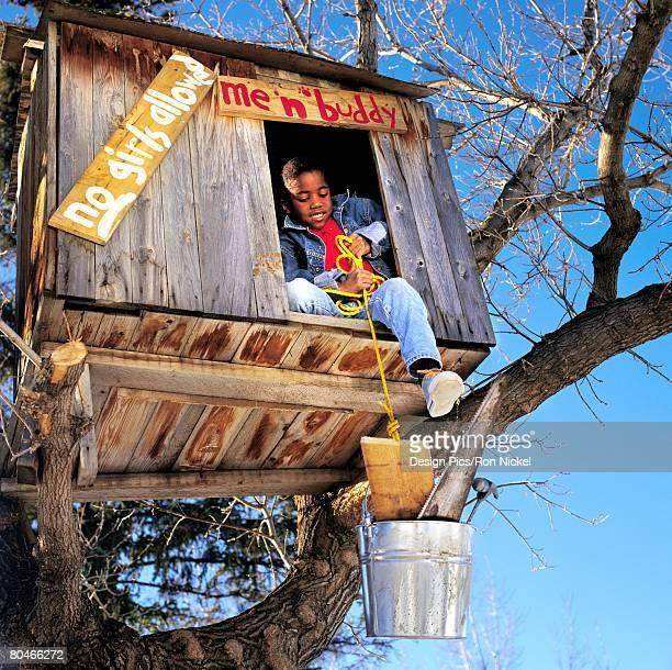 Boy renovating treehouse