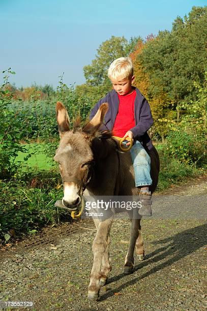Garçon d'équitation sur donkey