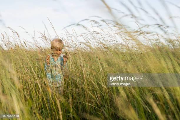 boy running in field - innocence stockfoto's en -beelden