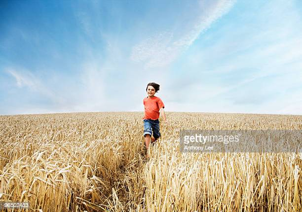 boy running in wheat field - rushing the field stock pictures, royalty-free photos & images