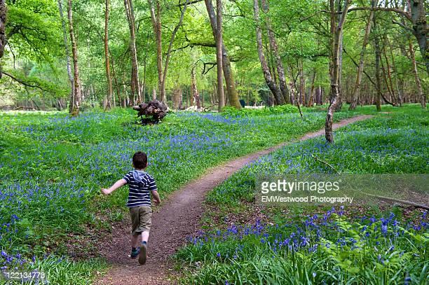 Boy running through path in bluebell wood